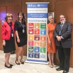 Social workers promote social work's role in promoting the U.N.'s sustainable development goals in New York.